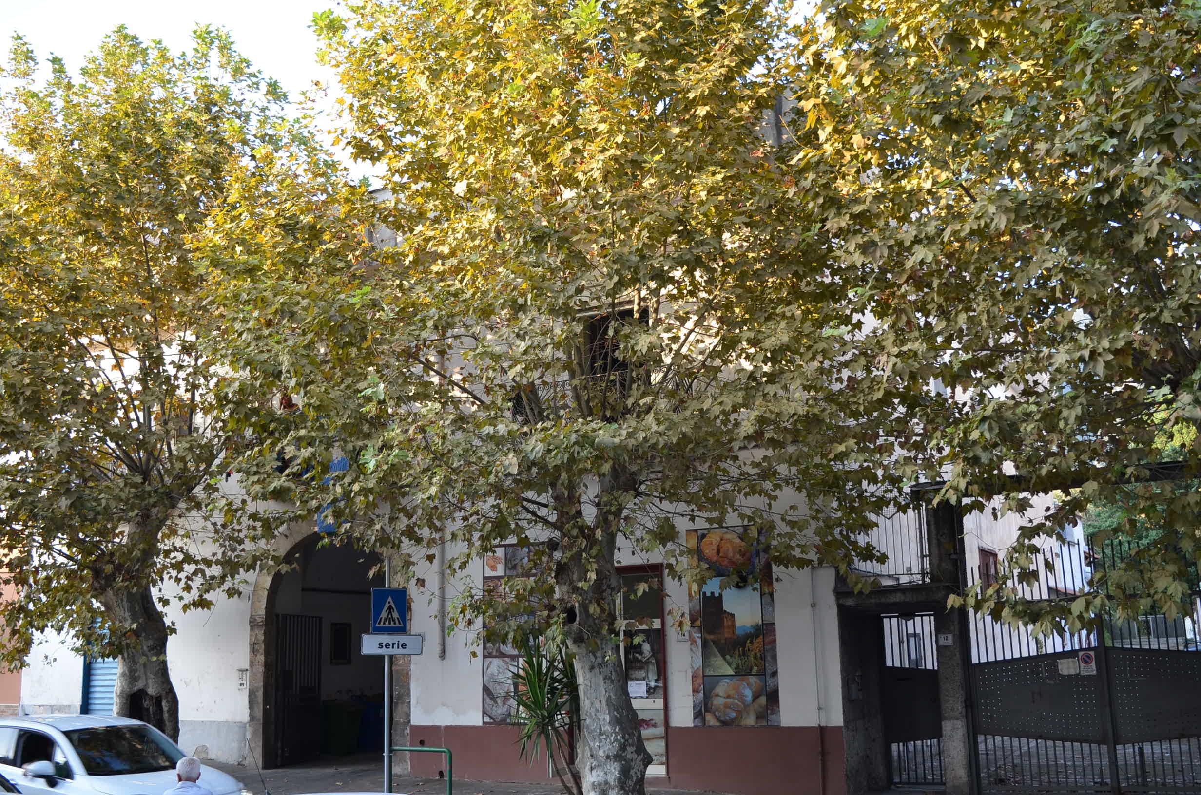 Appartamento con cantina, terrazzo e 5 posti auto a Sarno